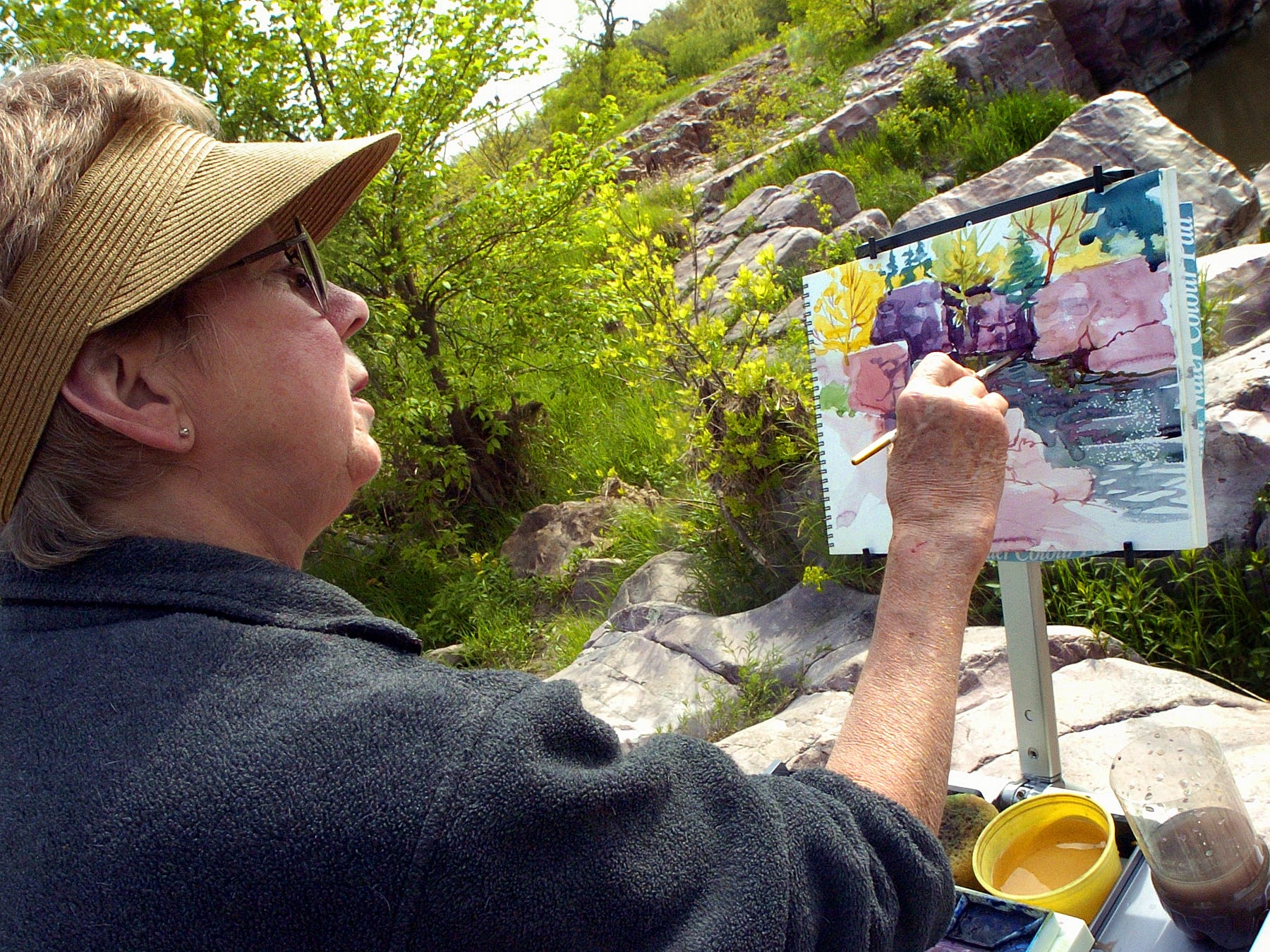 Sioux Falls artist Marian Henjum paints at her portable easel on the rocks at the edge of the Split Rock Creek in Palisades State Park near Garretson Wednesday afternoon May 17, 2006.