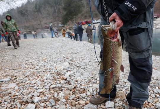Mike Luttrell holds the 6.65 pound rainbow trout he caught during opening day of trout season at Roaring River State Park on Friday, Mar. 1, 2019.