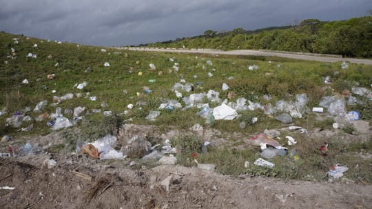 A landscape littered with plastic bags.