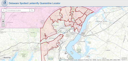 Spotted lanternfly quarantine locations in Delaware