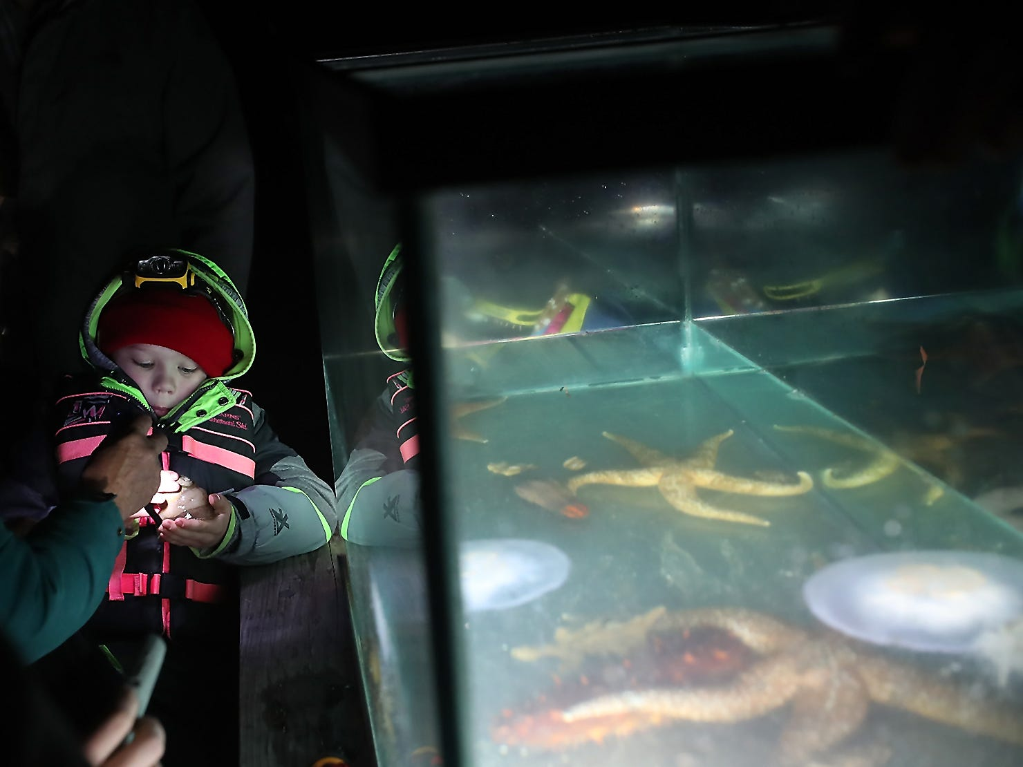 Dane Wooten, 6, holds a moon snail while taking part in the Night Time Pier Peer at the Brownsville Marina on Friday, March 1, 2019. Kitsap Beach Naturalists shined their lights on the sea life that flourishes around the pier while scuba divers captured different specimens to show those on the dock.