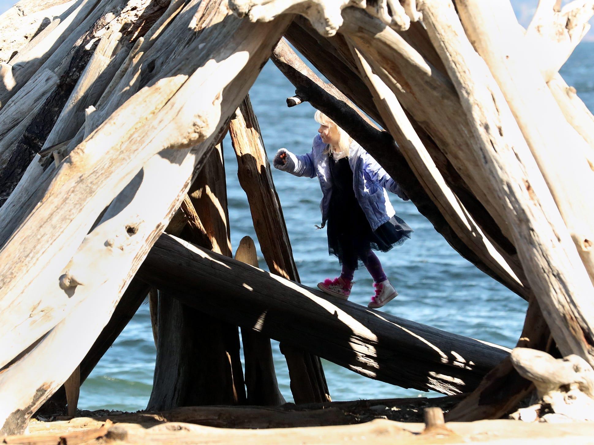 Lillian Hutton, 4, is framed by the logs of a driftwood fort at Bainbridge Island's Fay Bainbridge Park on a sunny Friday, March 1, 2019.