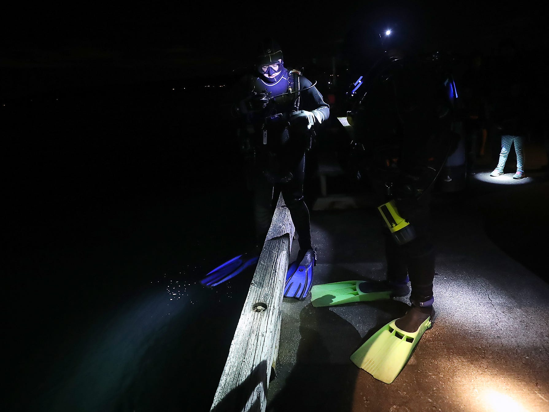 A pair of scuba divers get ready to take the plunge off the side of the dock during the Night Time Pier Peer at the Brownsville Marina on Friday, March 1, 2019. Kitsap Beach Naturalists shined their lights on the sea life that flourishes around the pier and divers captured different specimens and shared them with those on the pier.