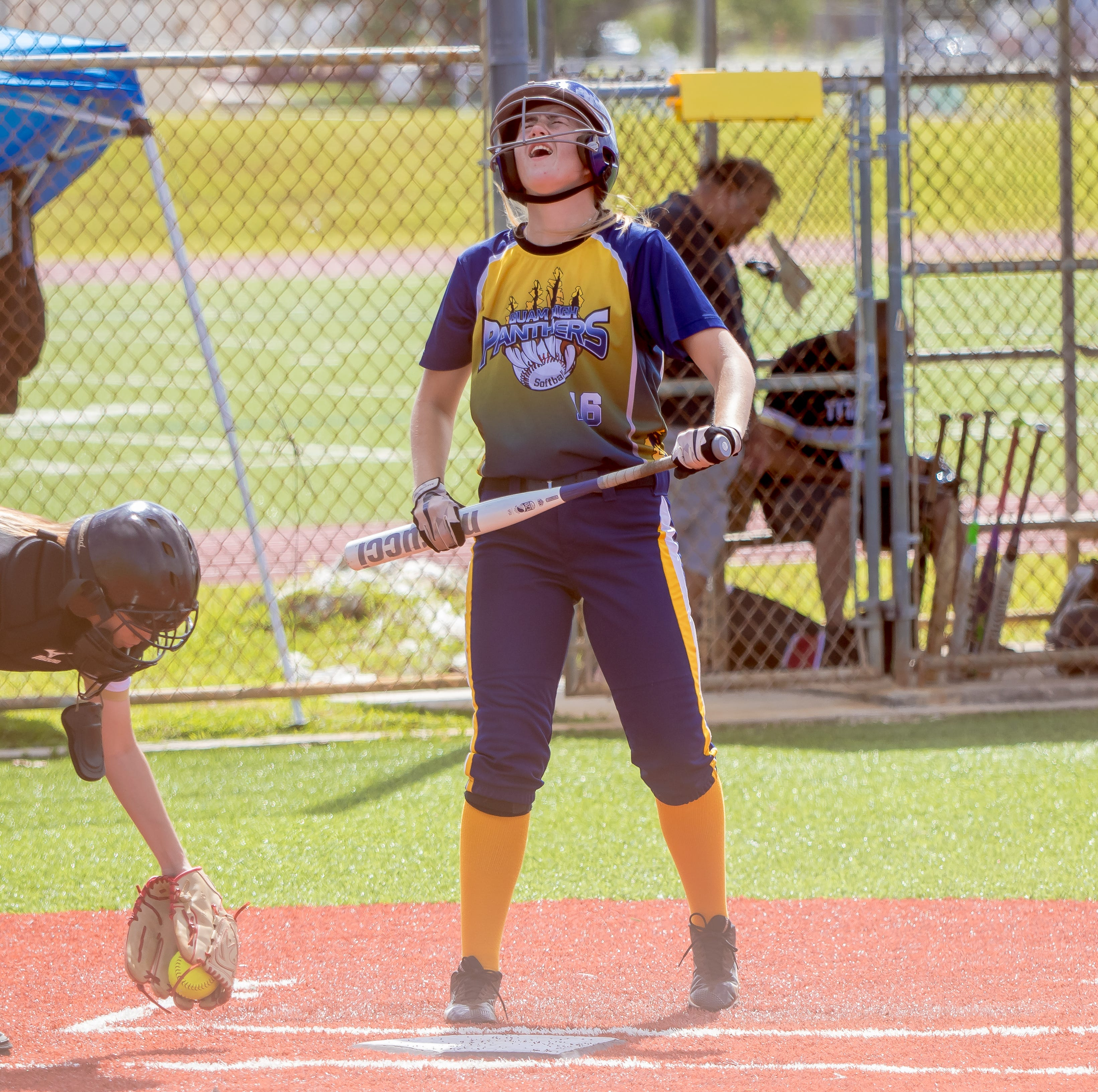 Panthers open IIAAG softball playoffs with rout