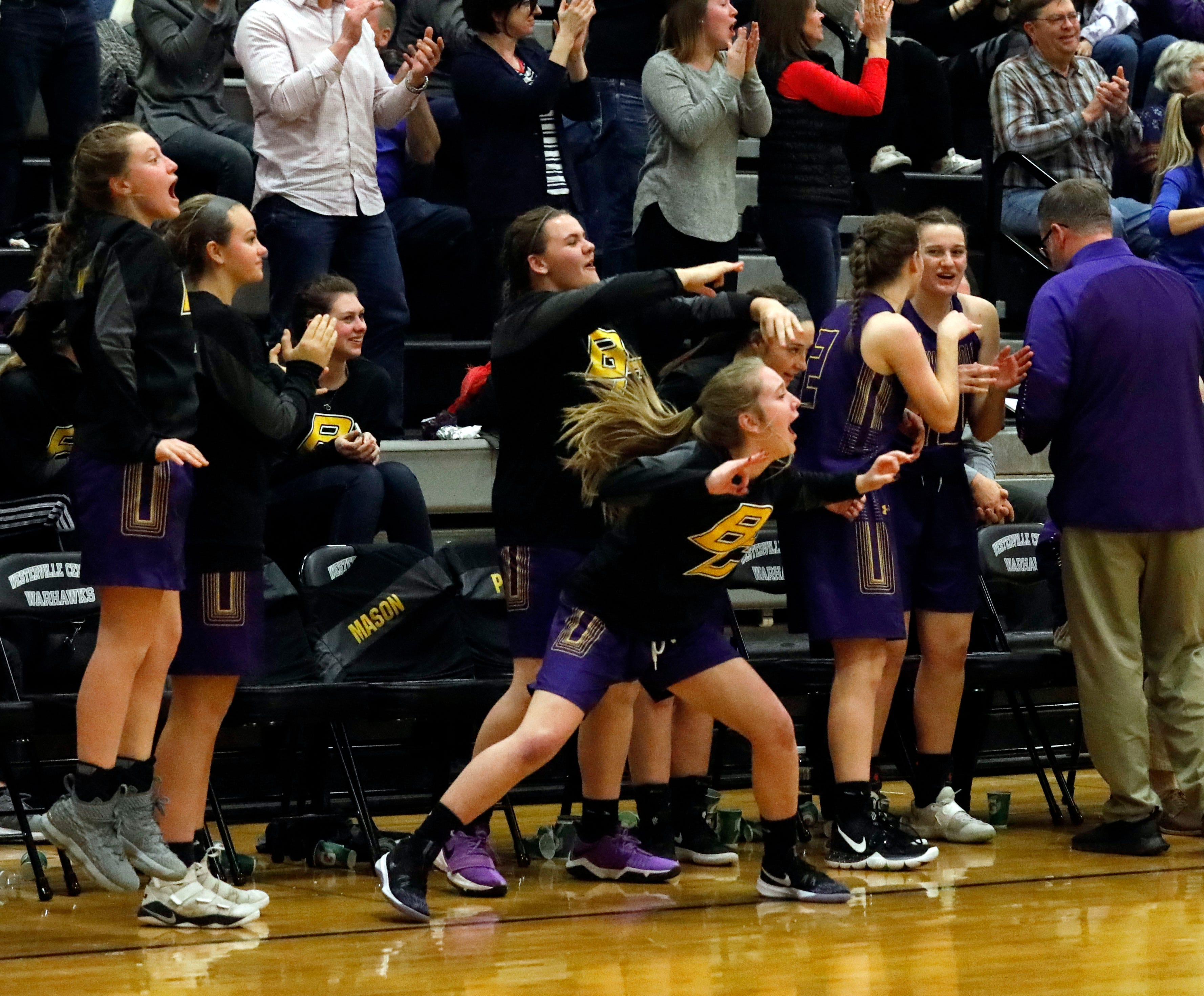The Bloom-Carroll bench erupts as their teammates increase their fourth quarter lead over Jonathan Alder during Friday night's game, March 1, 2019, at Westerville Central High School in Westerville.