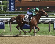 Code of Honor is a favorite in the Florida Derby.