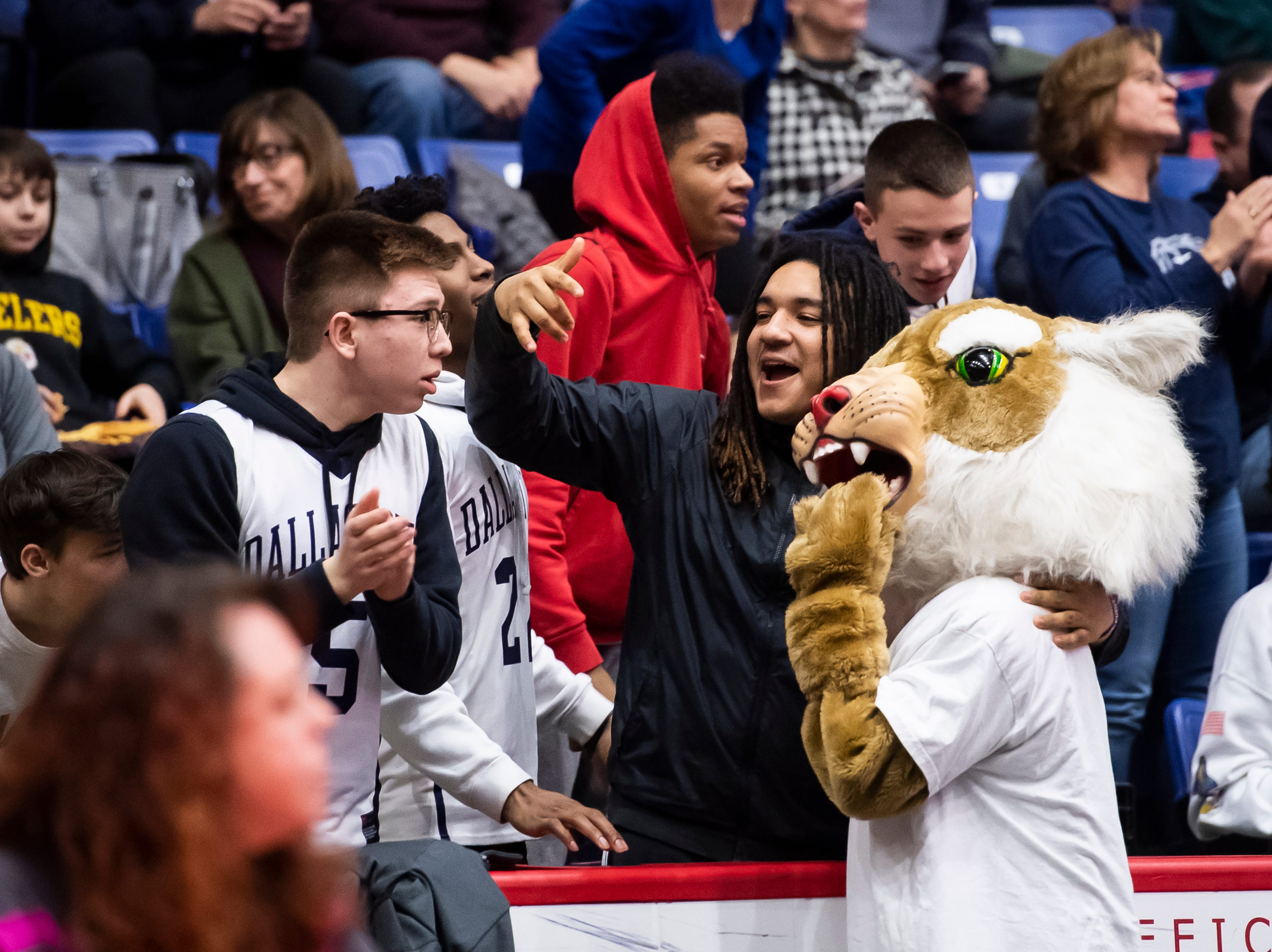 Dallastown fans pose with the Wildcat mascot during the District 3 6A girls championship game against Cumberland Valley at the Santander Arena in Reading, Pa., Friday, March 1, 2019. Dallastown fell 33-27.