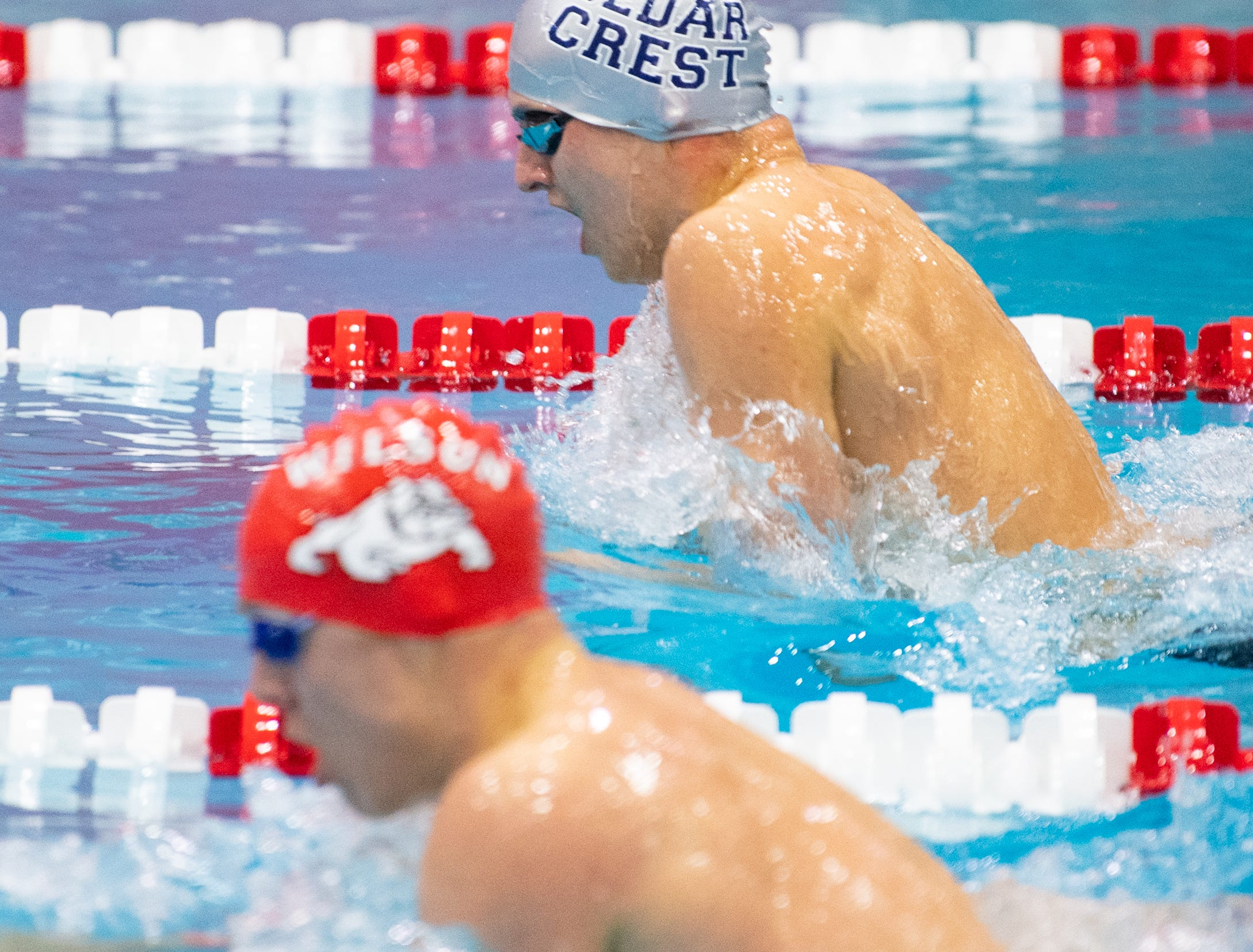 Cameron Hain of Cedar Crest competes in the Boys 200 Yard IM during the PIAA District 3 Boys AAA Championship, March 1, 2019 at Cumberland Valley High School.