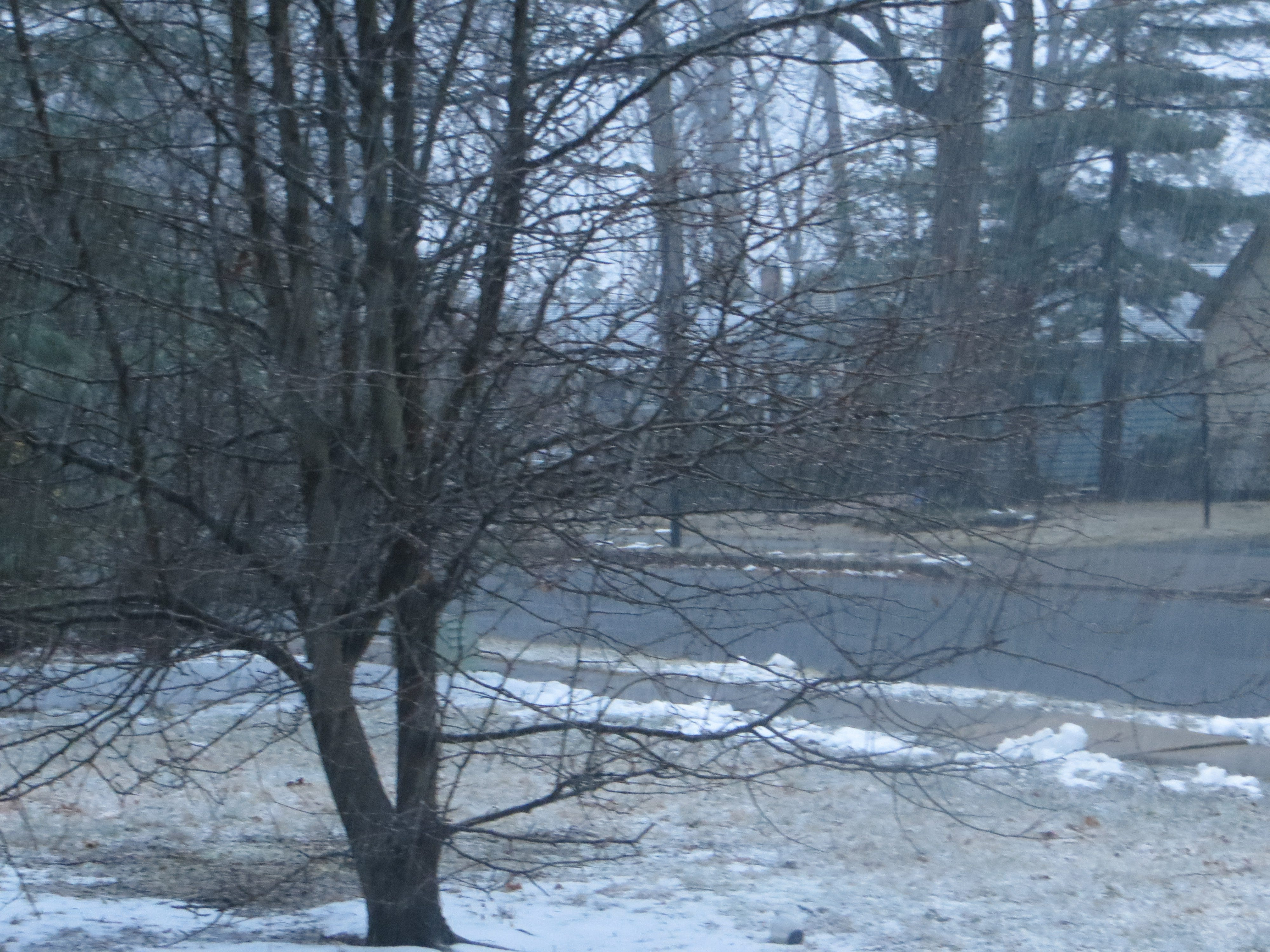 Snow begins to fall in East Brunswick around 5:45 p.m. on Sunday, March 3, 2019.
