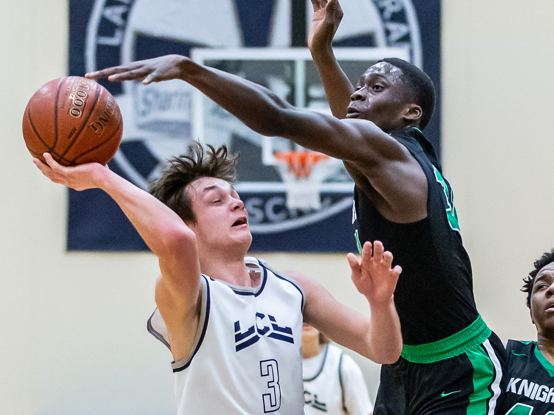 Dominican's Alex Antetokounmpo (34) fouls Lake Country Lutheran's Bryce Haertle (3) during the regional final at Lake Country Lutheran on Saturday, March 2, 2019.