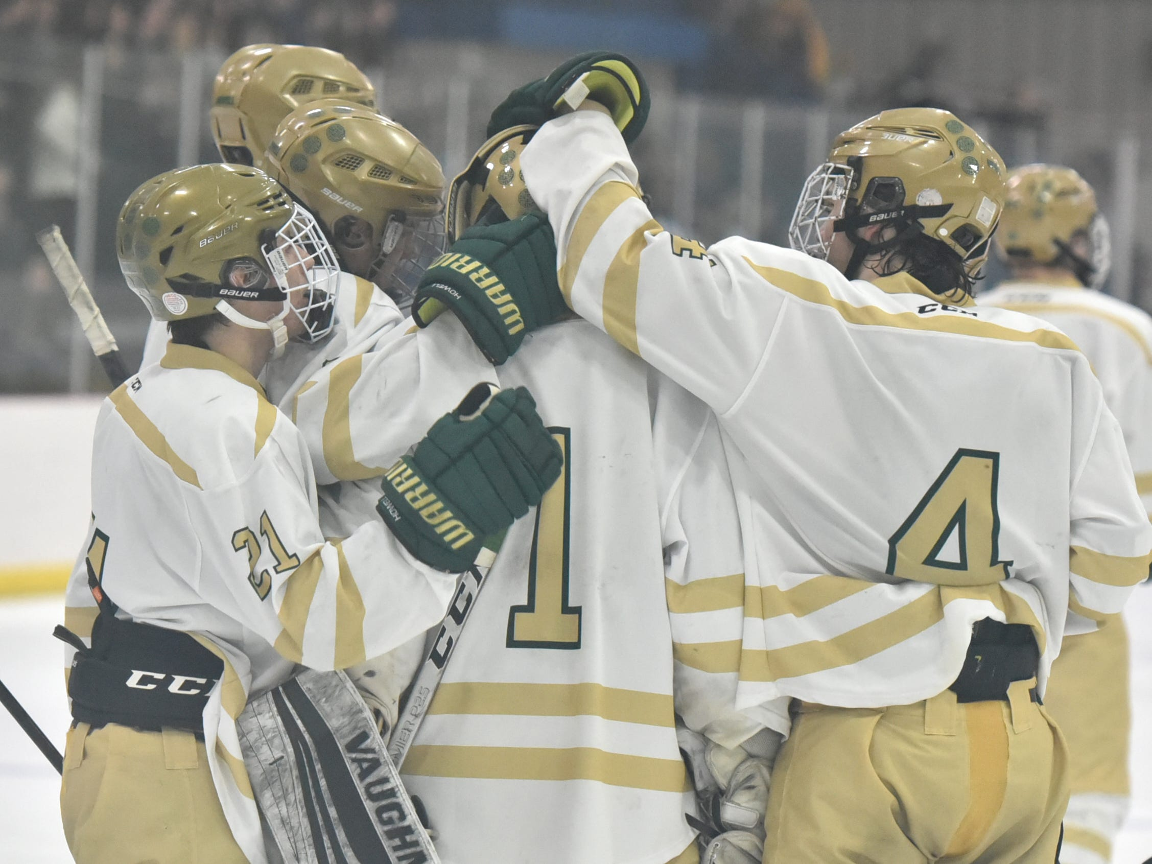 Howell hockey players congratulate goalie Ethan Ryan on a huge performance in a 3-0 loss to Livonia Stevenson in the regional championship game on Saturday, March 2, 2019 at Novi Ice Arena.