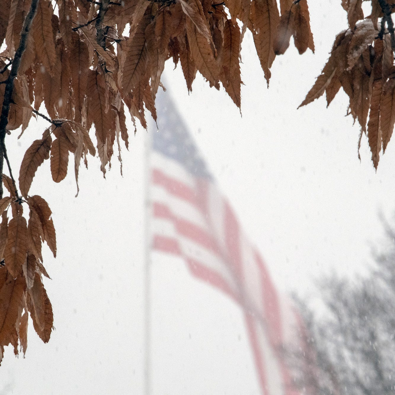 'Messy out there': Central Pa. to get 5-7 inches of snow