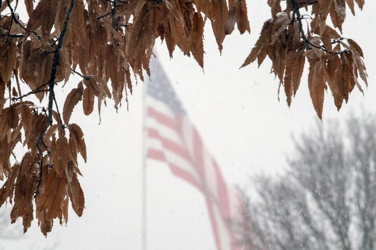 A flag waves in steady snow in West Manchester Township Sunday afternoon while brown leaves from last season cling to a tree.
