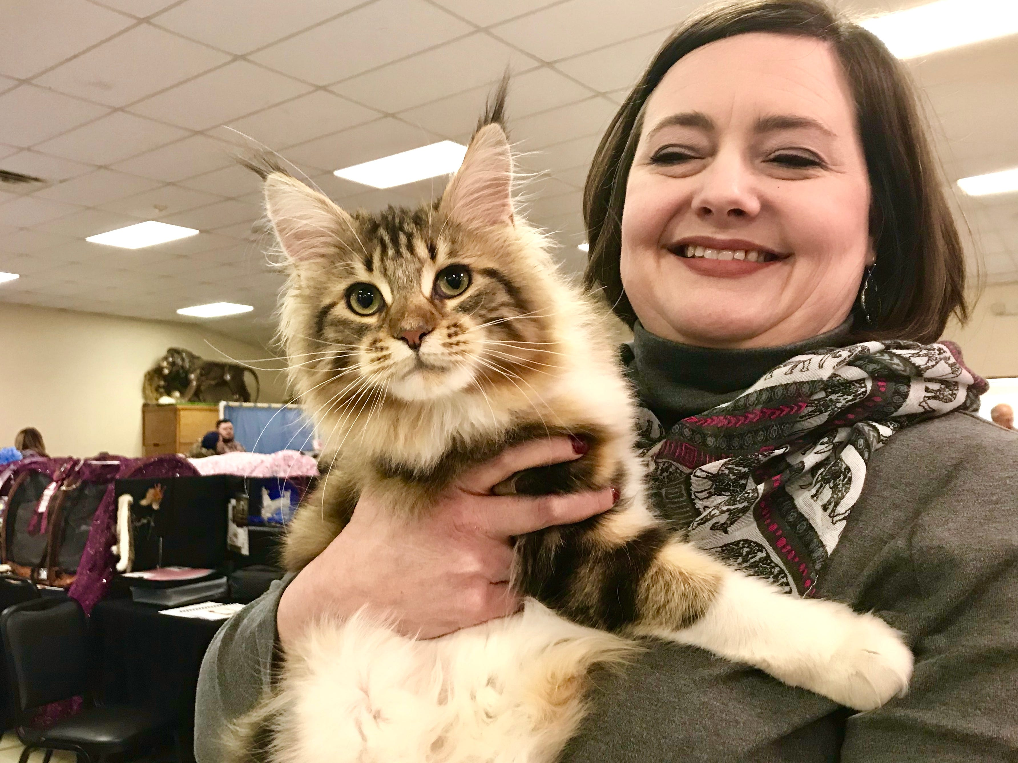 Angela Davidson, of Nebraska, holds Delilah, a Maine Coon, during the annual American Cat Fanciers Association.