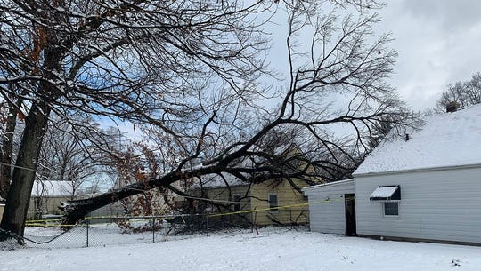 A tree collapsed on a Hillcrest Avenue home in Edison during the snowstorm.