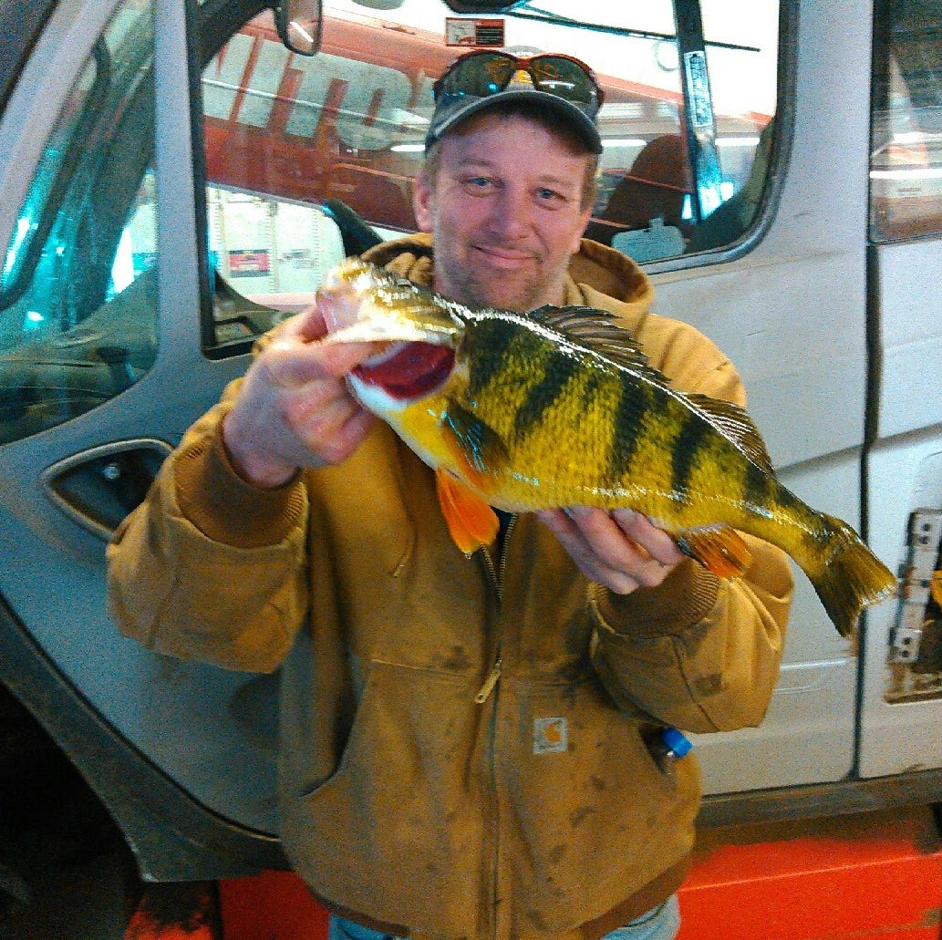 Iowa man sets new state record for largest yellow perch