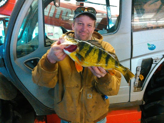 Royce Krummen of Lake Park holds his state record-setting yellow perch after catching it on a private lake near the Iowa Great Lakes in February.