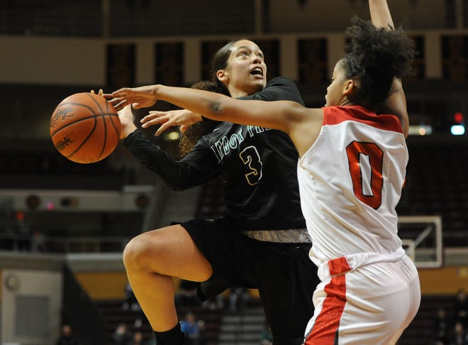 Ypsilanti Arbor Prep guard Mahri Petree (3) leads her team into the state semifinals Thursday.