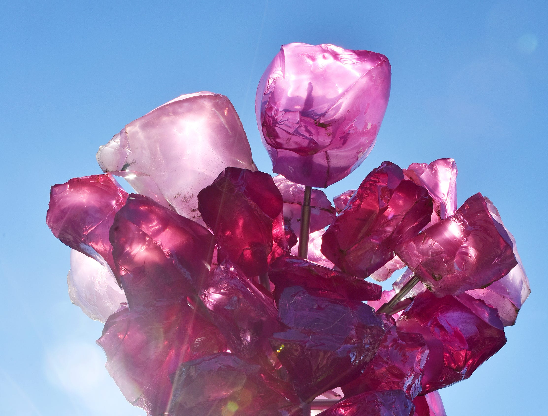 The Rose Crystal Tower by glass sculptor Dale Chihuly. Located near the Governor's School, this sculpture was commissioned in honor of Harriet Wyche, a life-long Greenville resident and community volunteer, and is located in a garden named for her.
