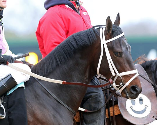 Super Steed won the Southwest Stakes on Feb. 18 at Oaklawn Park in Hot Springs, Arkansas. After bone bruising was discovered in one of his front legs, Super Steed will have to miss anticipated starts in the Rebel Stakes and the Arkansas Derby as he returns to Kentucky to rest.