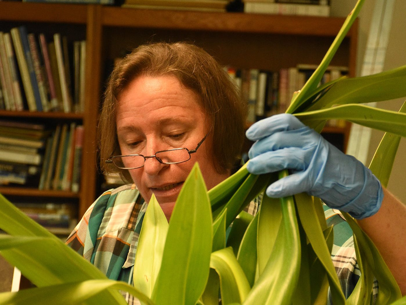 Patricia Rose leads a class on orchid cultivation. The Calusa Garden Club Gardening Expo at Marco Island Center for the Arts on Saturday displayed beautiful arrangements and showed people how to create their own.
