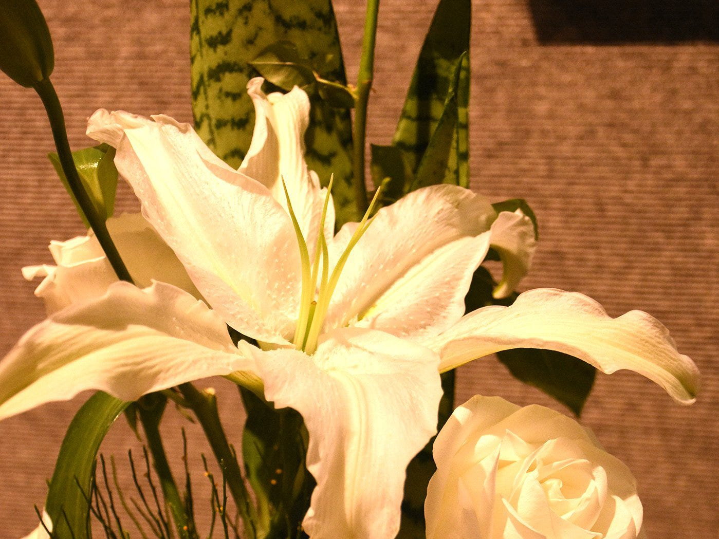 These white lilies and roses make up a line design. The Calusa Garden Club Gardening Expo at Marco Island Center for the Arts on Saturday displayed beautiful arrangements and showed people how to create their own.
