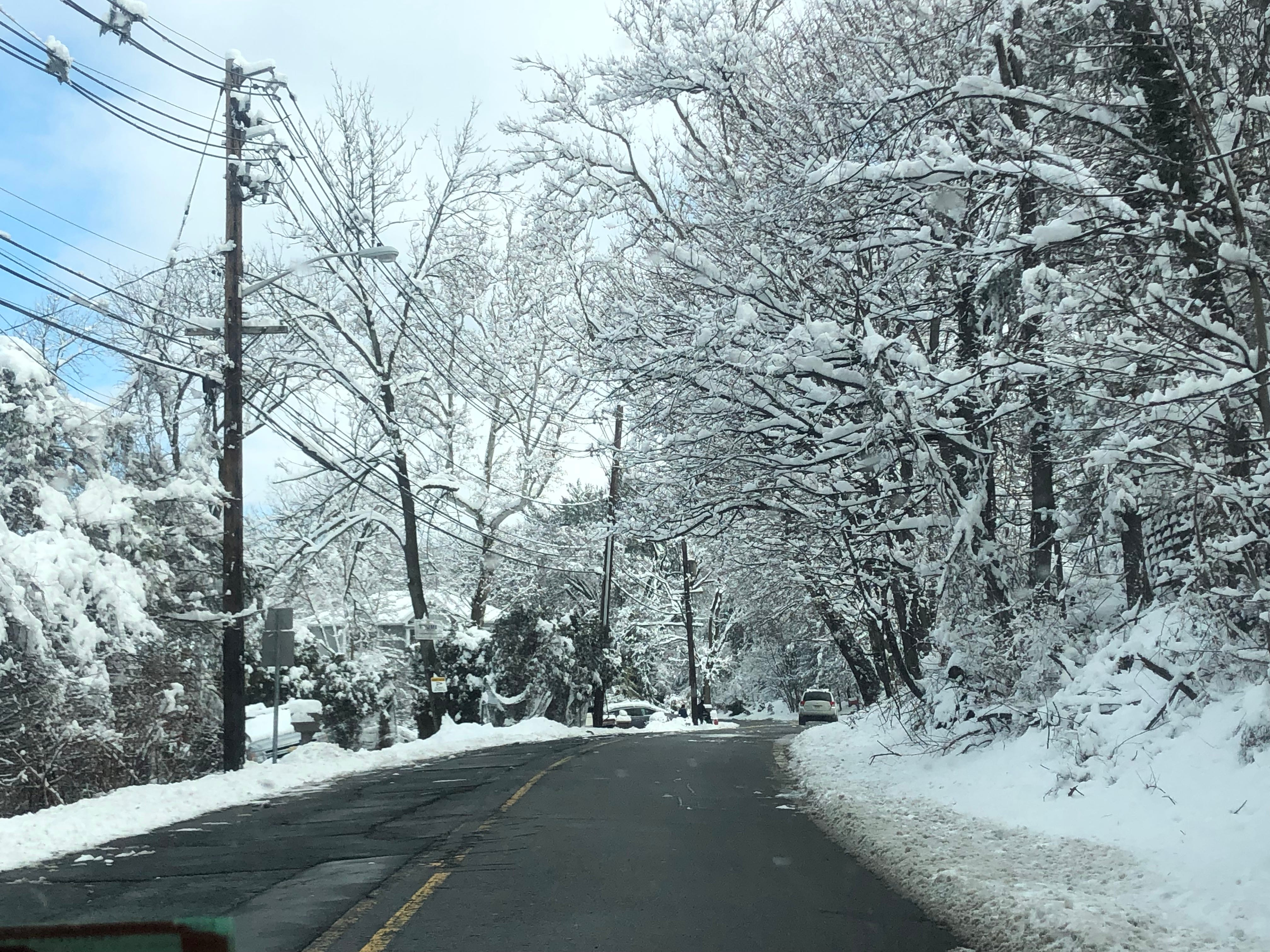 The trees over Rifle Camp Road in Woodland Park were heavy with snow.