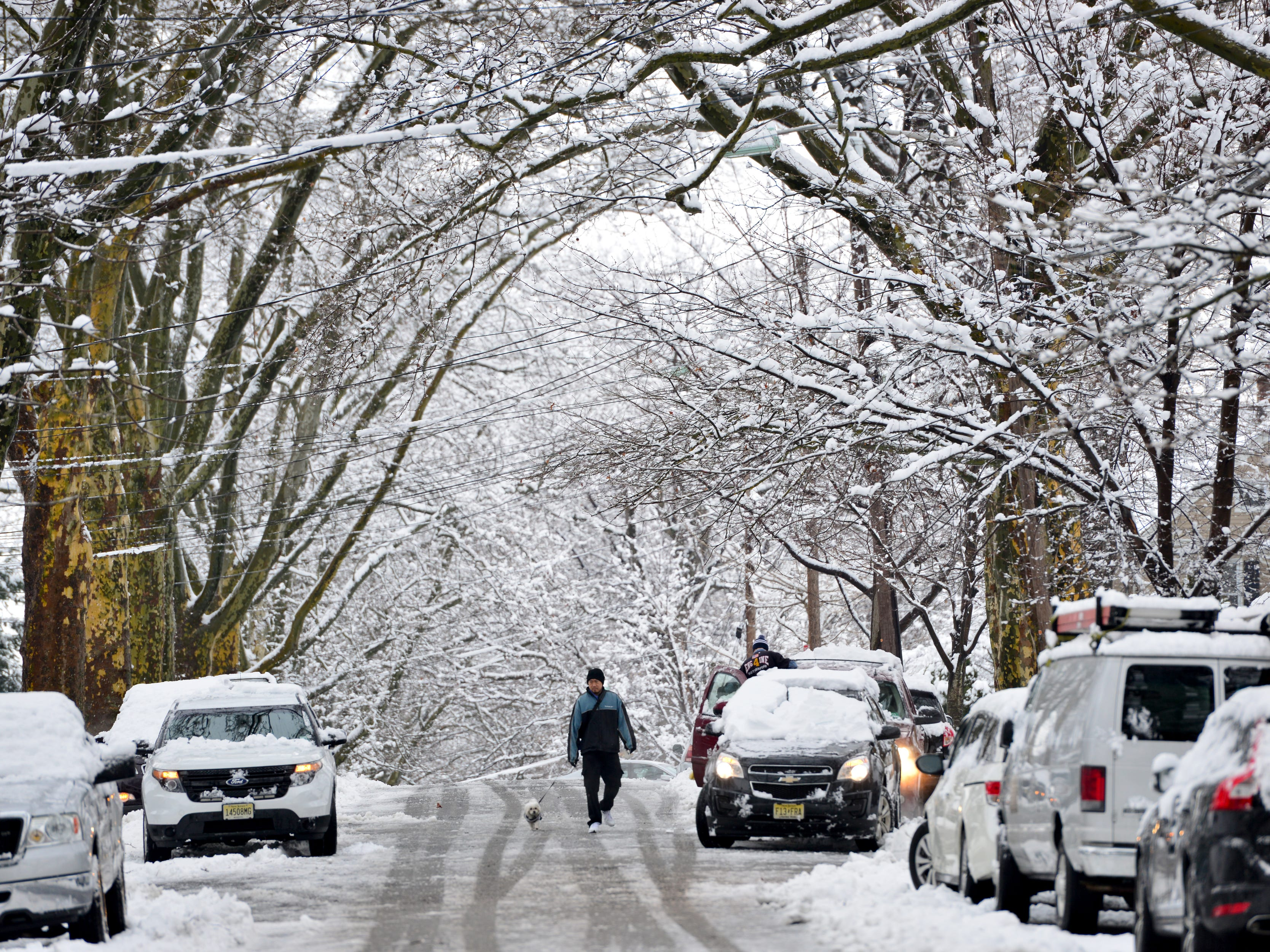 A man walks his dog down a snow covered street in Rutherford on Monday morning March 4, 2019.