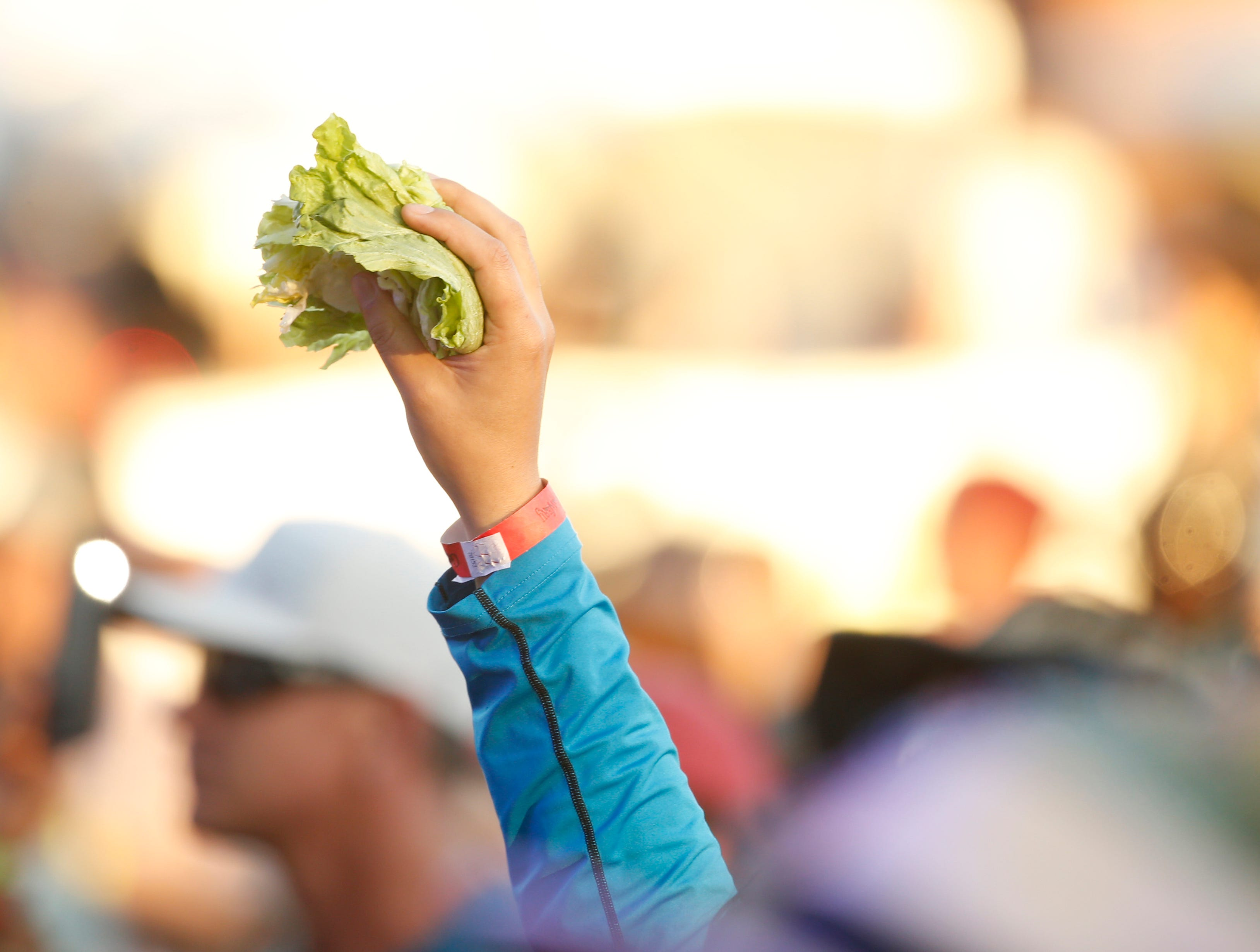 A fan holds some lettuce in the air as Lettuce performs during McDowell Mountain Music Festival in Phoenix on March 3, 2019.