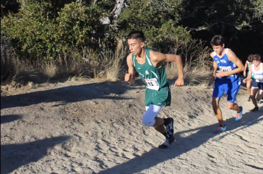 Senior Peter Maciel, shown here in fall running cross country, won three races between two events last week.