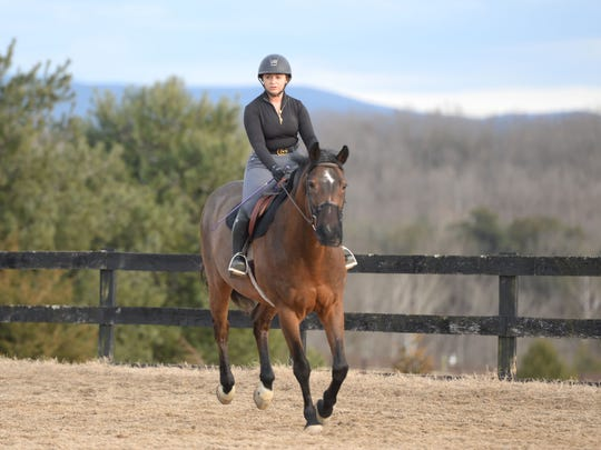 Olivia Bondi rides at Jason Berry Stables in Verona in February. Bondi is a JMU sophomore and a member of the school's equestrian  team.