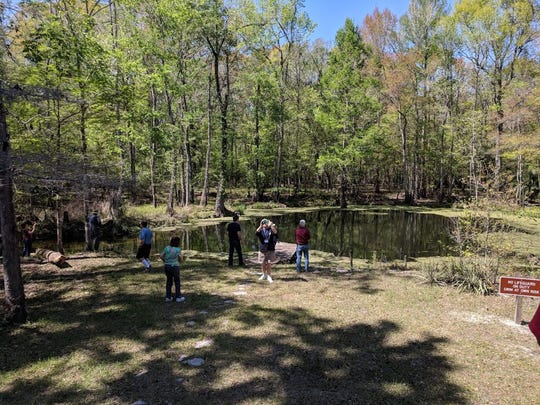 The Tallahassee Civic Chorale will hold a walking tour and fish fry at Natural Bridge State Park.