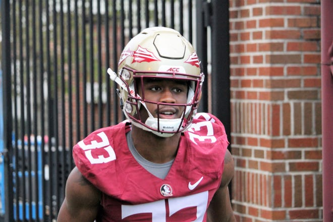 Amari Gainer has cemented himself as a force to be reckoned with in Florida State's linebacker corps.