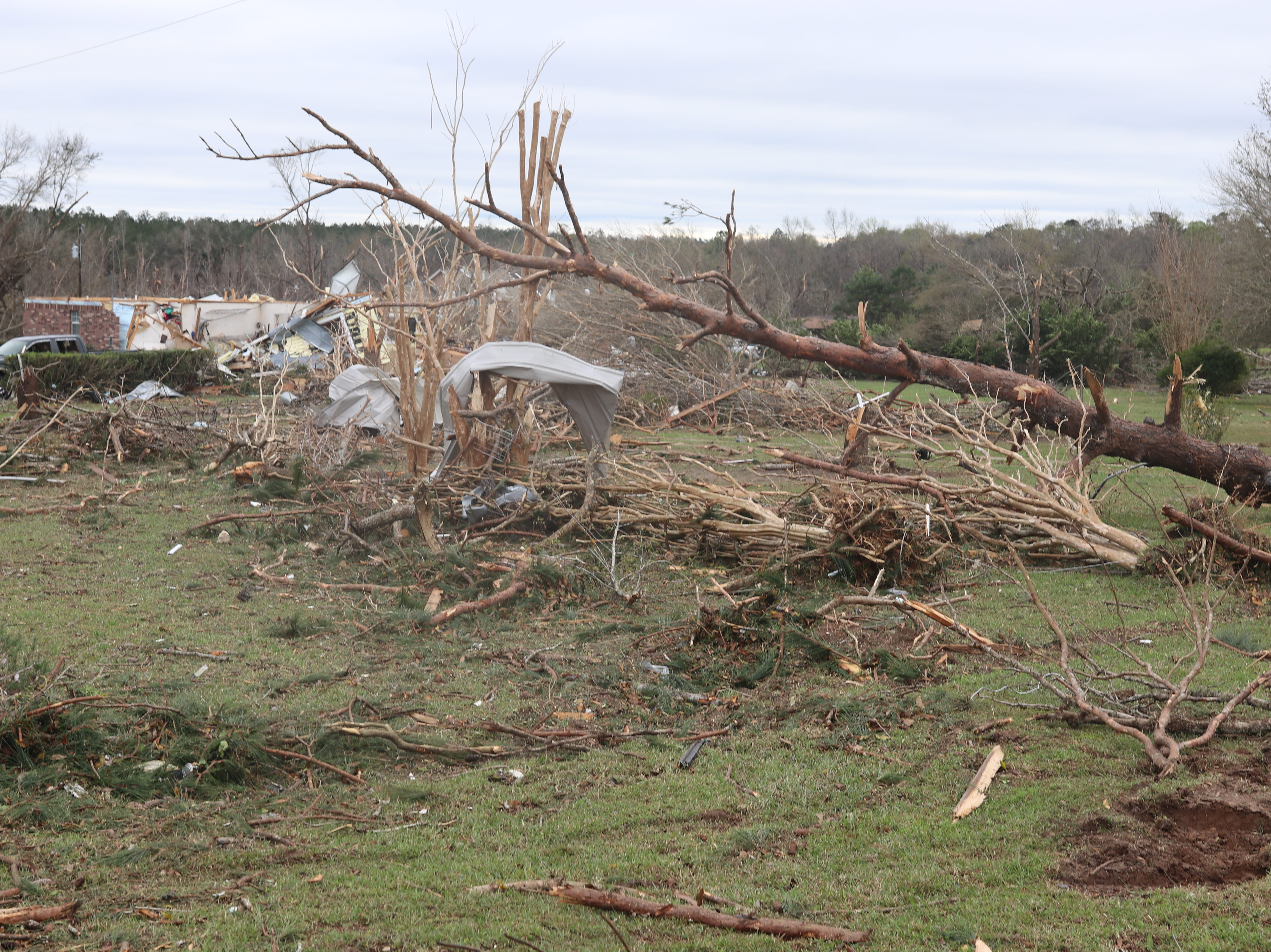 Downed trees and mangled debris dot a small neighborhood in the Baum Community Monday morning following a tornado Sunday night.