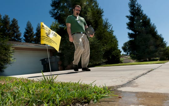 "Josh Nauman left an indicator flag and a ""fix-it"" notice for water ordinance violations in the 5000 block of West Feemster Avenue in Visalia on Tuesday, July 1,2014. He is a Water Conservation Education Coordinator for the the City."