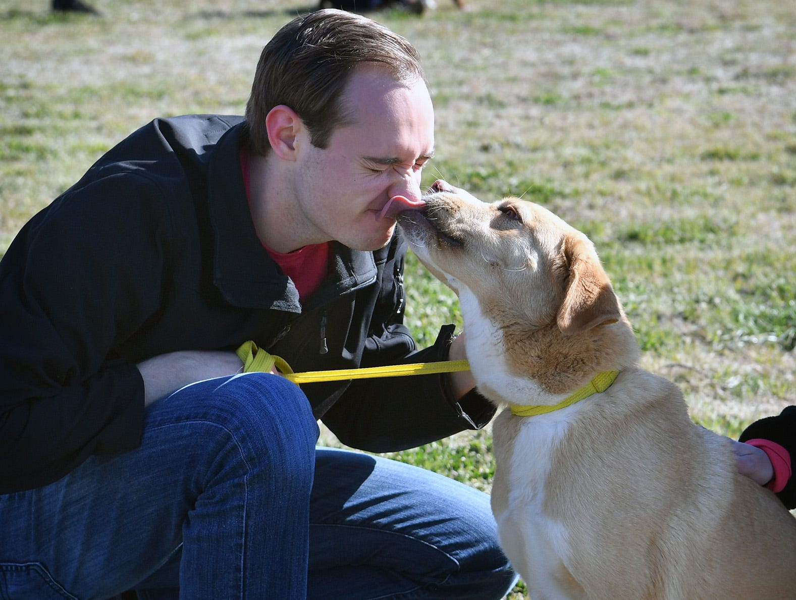 Mitchell Aiello, who plays Cap'n Turbot in Paw Patrol Live, gets kisses from a dog named Pandora while volunteering at the Humane Society of Wichita County Monday afternoon.
