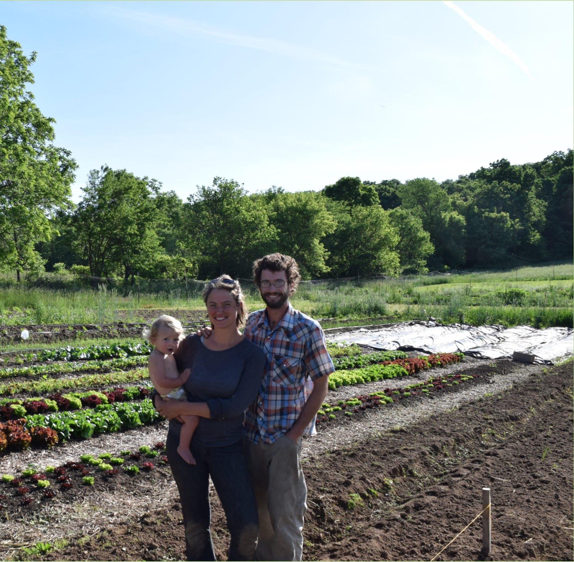 Lafayette Co. couple finding success with vegetable and sheep farm