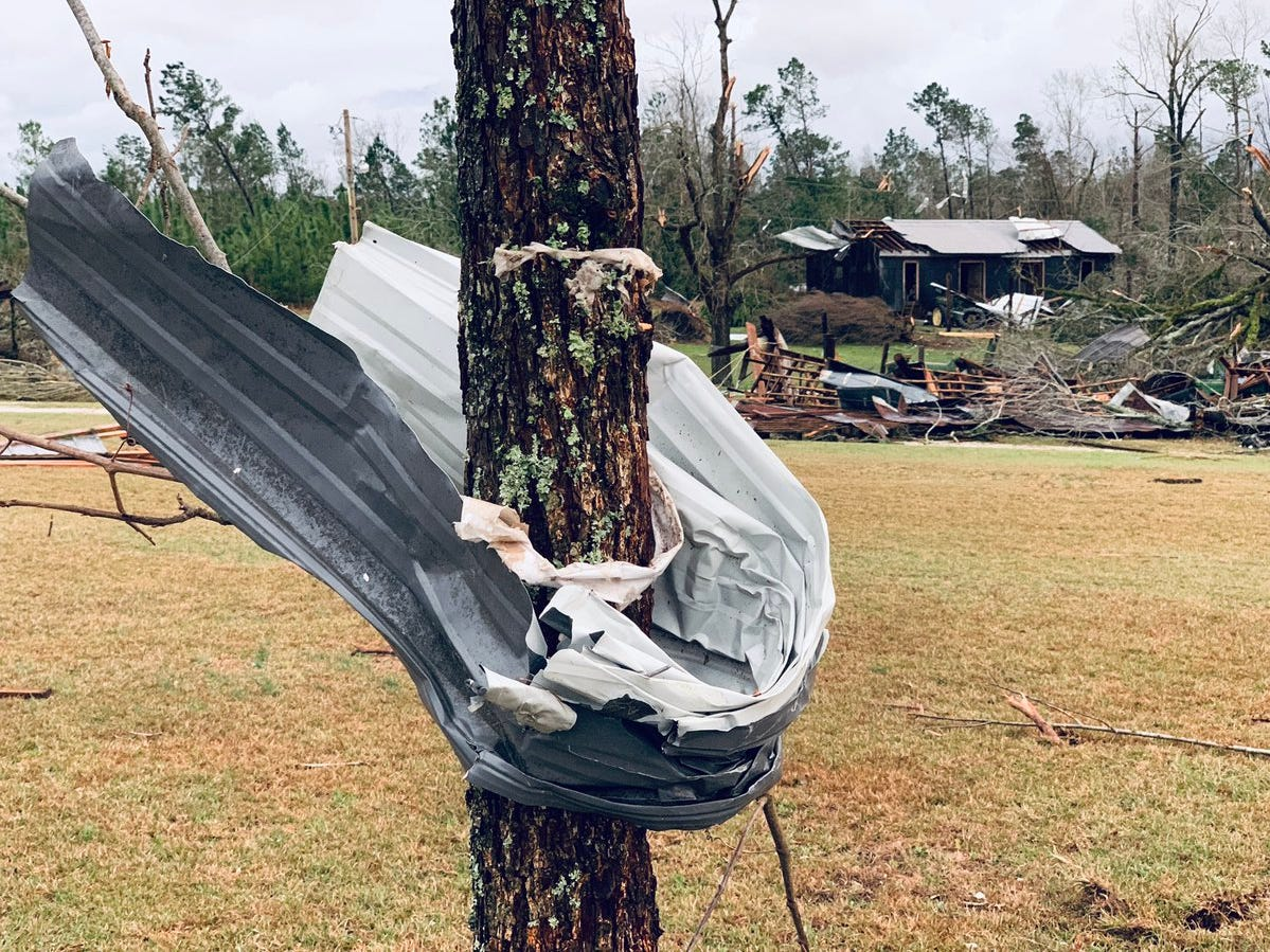 """Twitter user Scott Fillmer (@scottfillmer) posted on March 3, 2019 """"This metal wrapped around the tree is everywhere, in the distance is what used to be Capps Sausage. #tornado in Beauregard"""""""