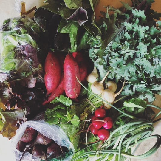 A spring CSA offering from Ten Mile Farm. Photo by Christina Carter, courtesy of ASAP.