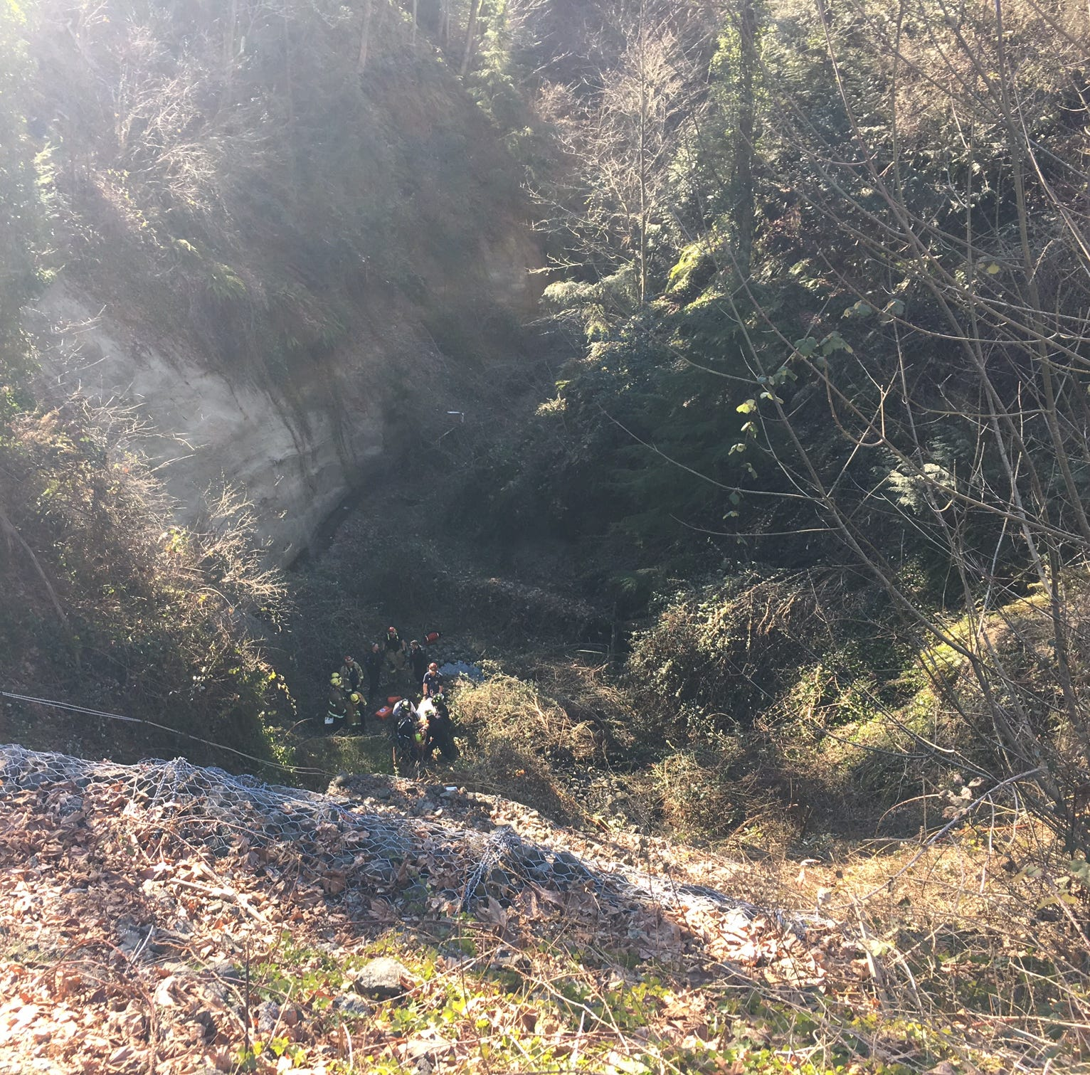 Crews rescue near-naked man from ravine in East Bremerton