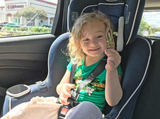"""Isabella enjoys a piece of """"Florida snow"""" she picked at the park recently."""