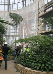 Crews shore up the conservatory dome for removal of a column as part of the project at the Belle Isle site.