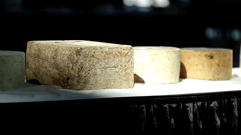 Swiss cheese named America's best, Marieke Gouda places 2nd, 3rd in contest