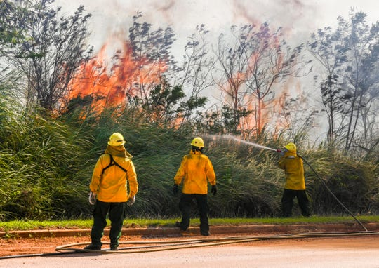 Department of Agriculture Forestry Division employees battle a wildland fire that tries to break through the trees and brush lining the road leading to LeoPalace Resort Guam on Tuesday, March 5, 2019.