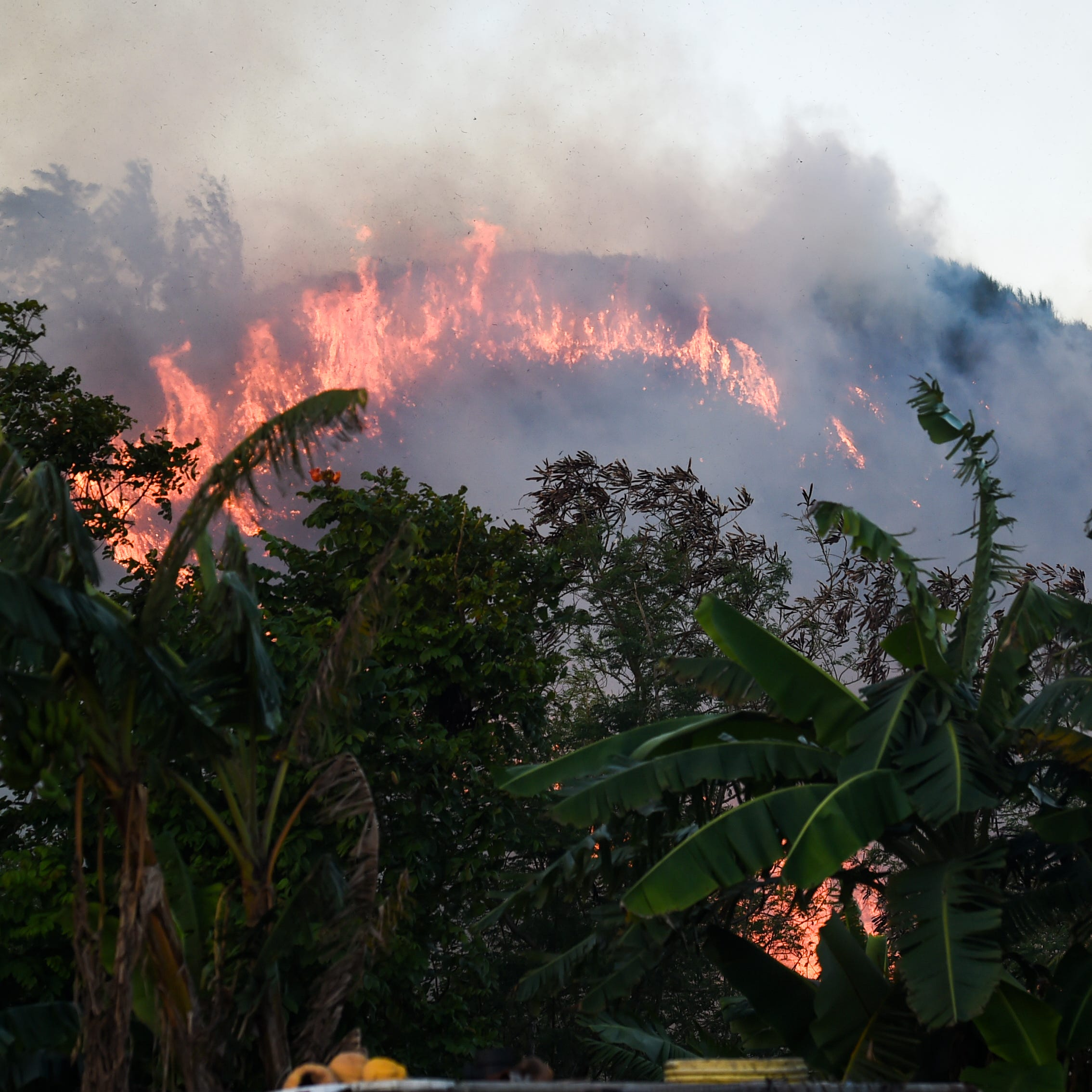 Our View: Take steps to help prevent grass fires on Guam