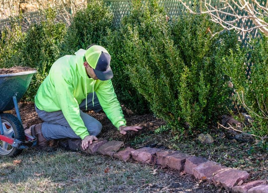 Many gardeners spread a light layer of wood mulch in spring.