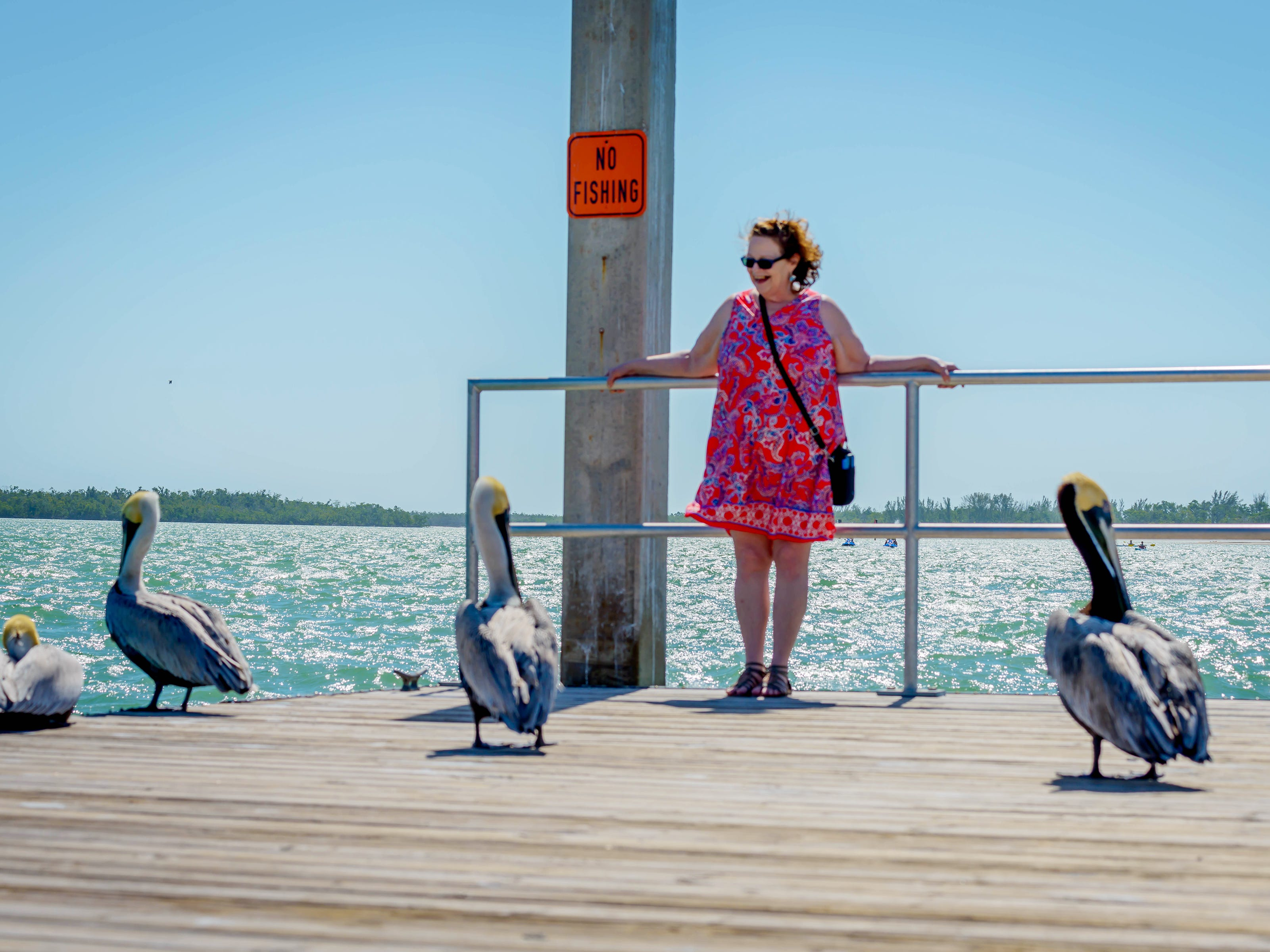 "Debra Kewley of Marco Island writes: ""My sister, from Minnesota, loving the pelicans at Caxambas Park."