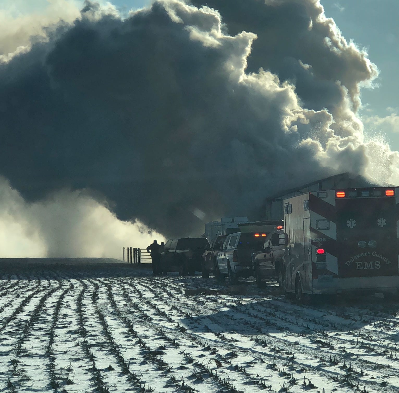 Horses, dogs killed in Harrison Township barn fire
