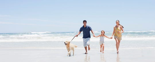Staying active — like walking your dog or strolling on the beach — is key to a longer, healthier life.