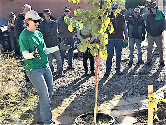 Urban & Community Forestry Program Manager Jennifer Dann celebrates at  Albuquerque NeighborWoods planting in 2018.